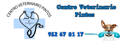 Clinica Veterinaria Pintos